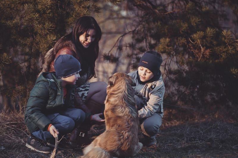 Why Feed Raw Pet Food